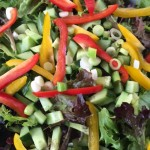Seasonal Mixed Salad
